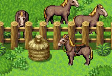 größeres Pferd