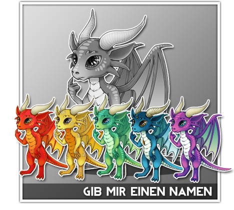 pet_angebot_dragon.png