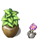 Planty_by_Crazy_Leen.png