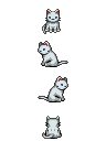 catpose.png